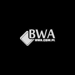 Homogenizatory do lodów - BWA